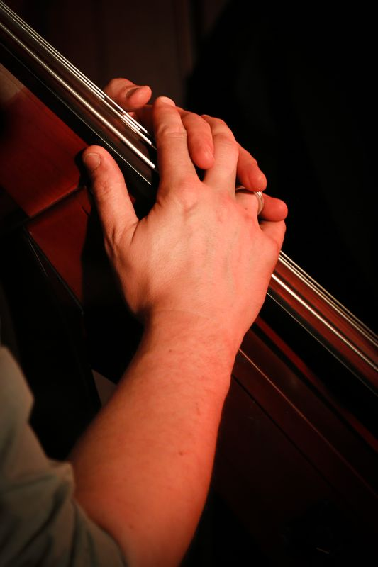 hands bass upright double fingerboard pic jpg